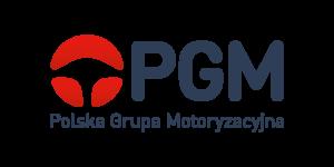 polska-grupa-motoryzacyjna